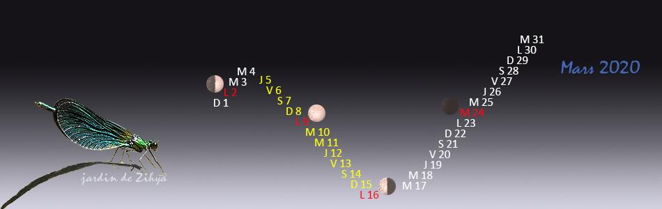 Calendrier lunaire 2020 pour le potager biologique